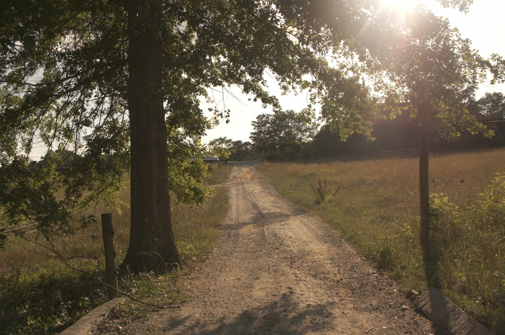 The road leading to your freelance writing dreams.